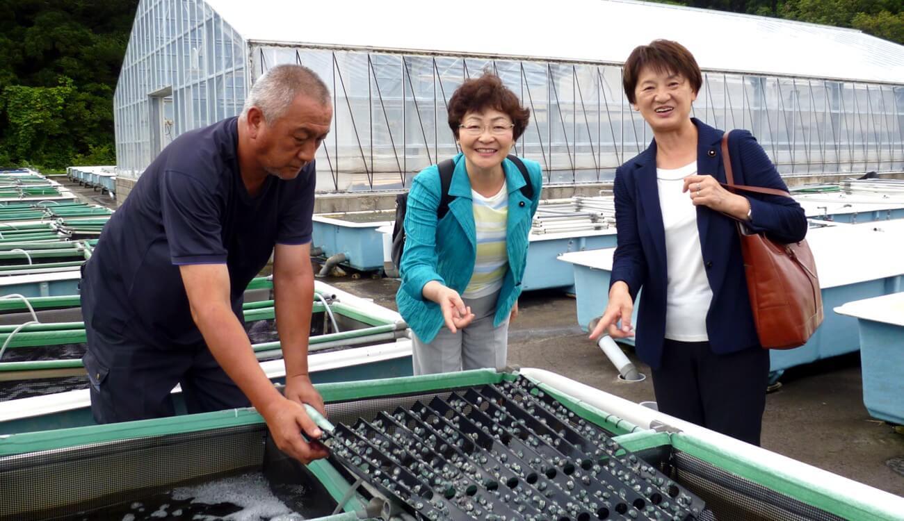 熊石アワビセンターを視察する真下(真ん中)、菊地(右)両道議=北海道八雲町