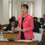 318菊地議員予算特別委員会(総合政策部)